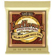 Ernie Ball Earthwood 2069 - Corzi Chitara Acustica