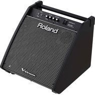 Roland PM-200 - Monitor Tobe Electronice