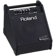 Roland PM-10 - Monitor Tobe Electronice, fig. 1